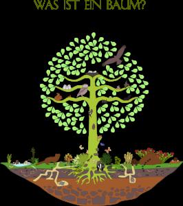 Was ist ein Baum