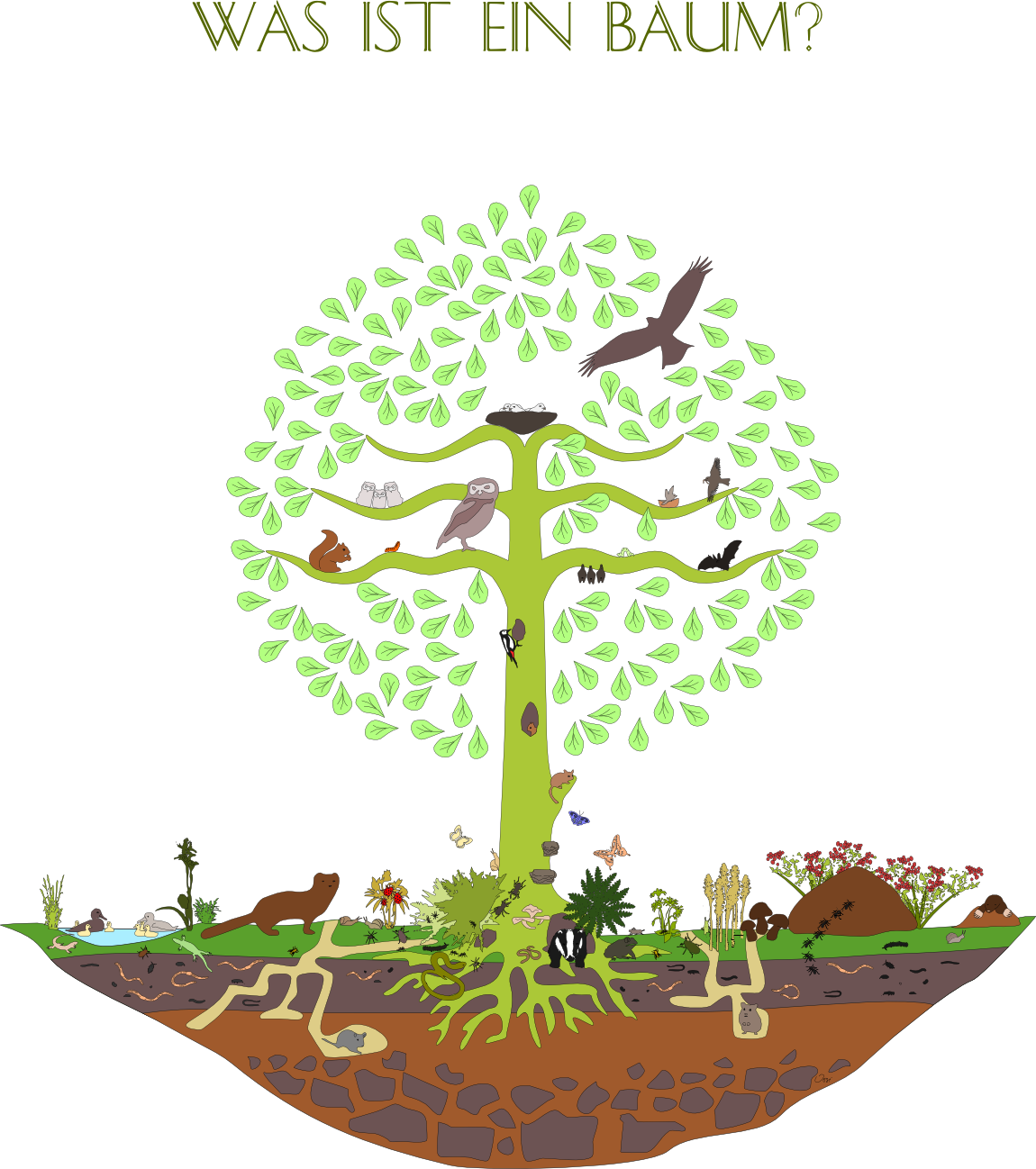 Was ist ein Baum?